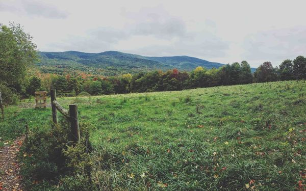 Break Free from NYC: Safely Hiking the Scenic Hudson Valley